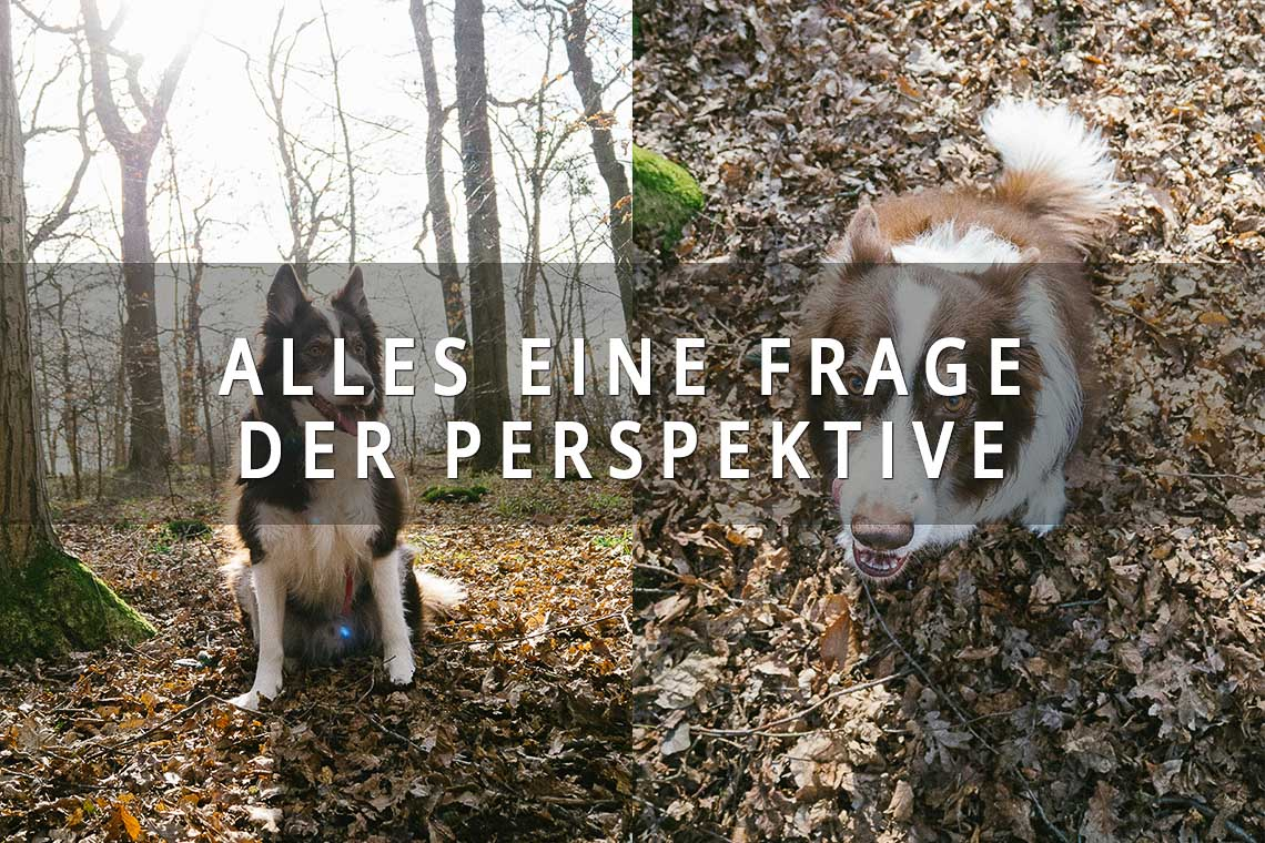 Alle eine Frage der Perspektive, die richtige Perspektive beim Fotografieren