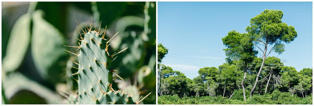 Mallorca_LittleBlueBag_Reiseblog-2157