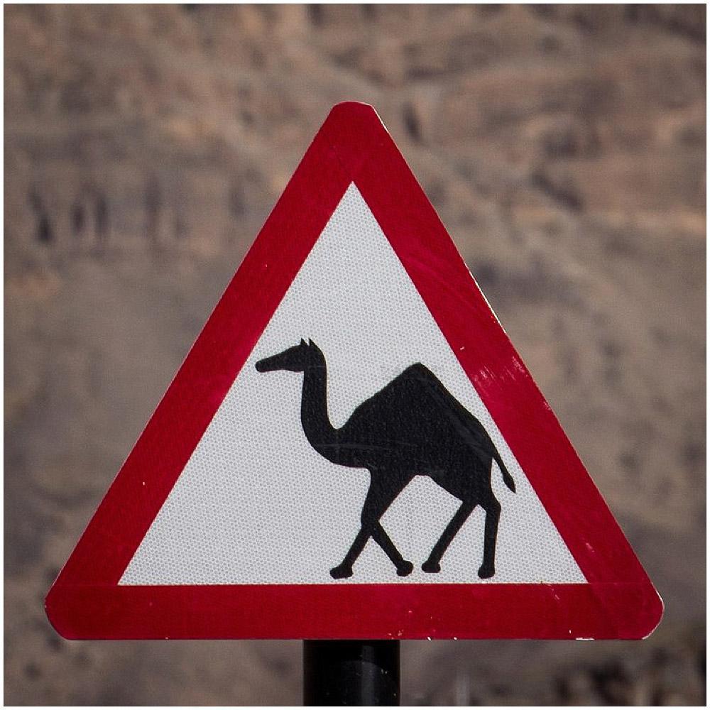 Reisebericht_Oman_LittleBlueBag_Reiseblog-0006