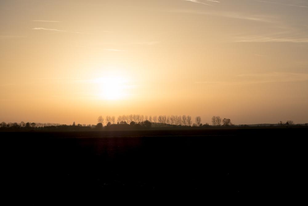 Fotografieren mit natürlichem Licht