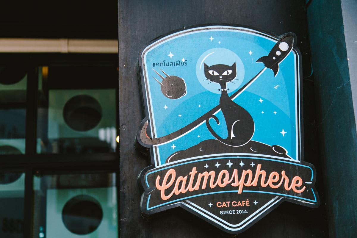 catmosphere_web_littlebluebag-de-20161106-1