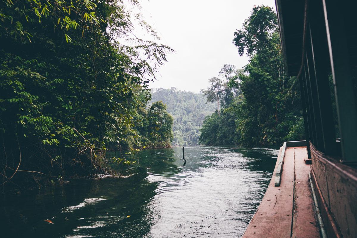 Dschungeltour Thailand