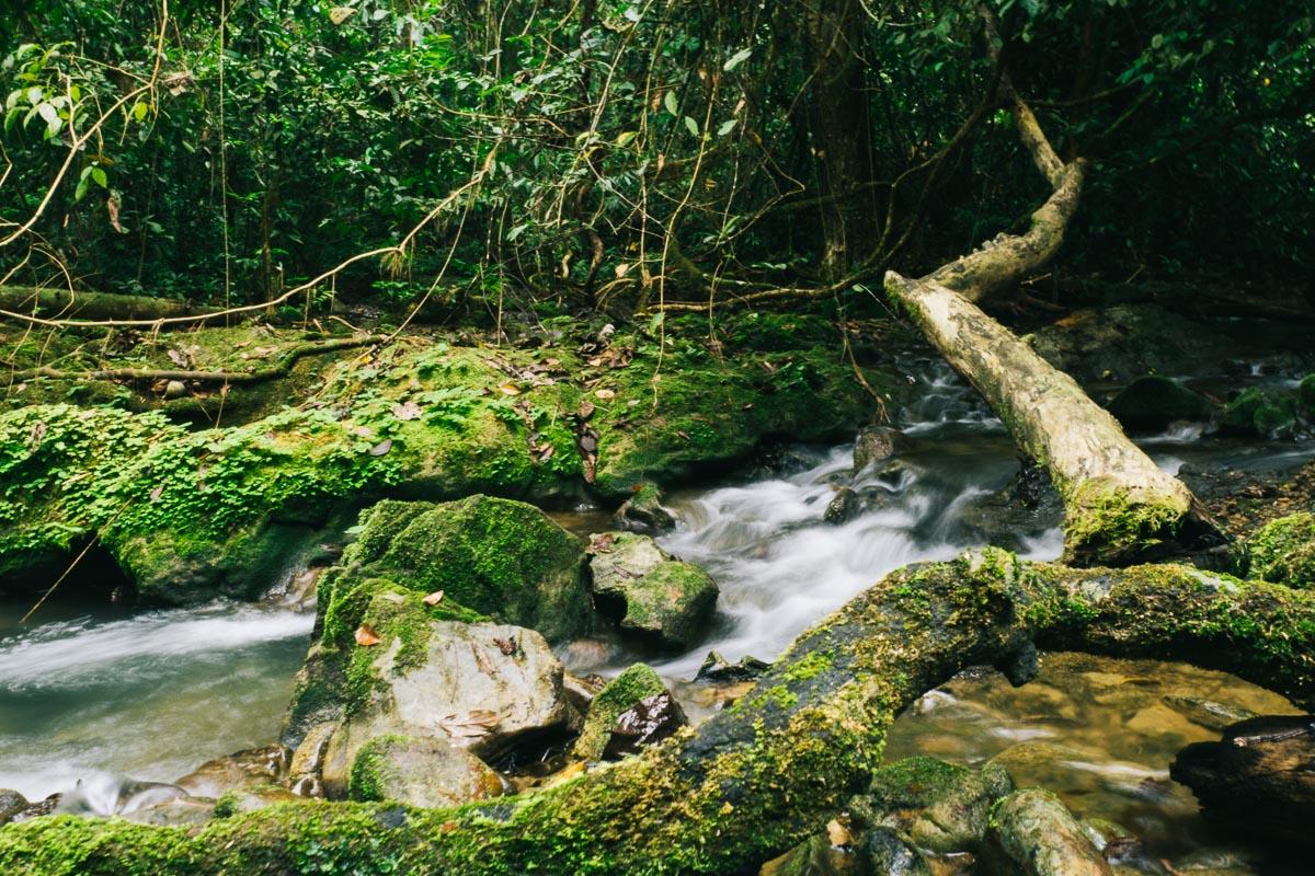 Wasserfall Thailand Khao Sok