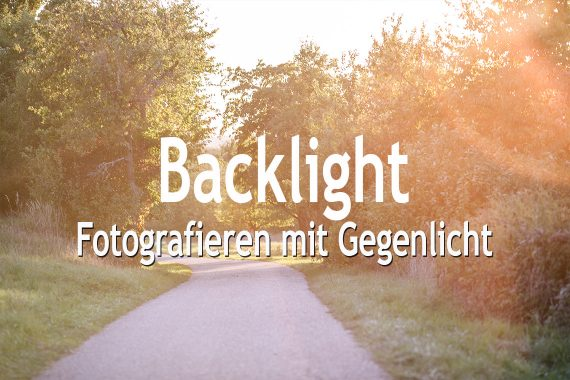 Backlight Fotografieren mit Gegenlicht