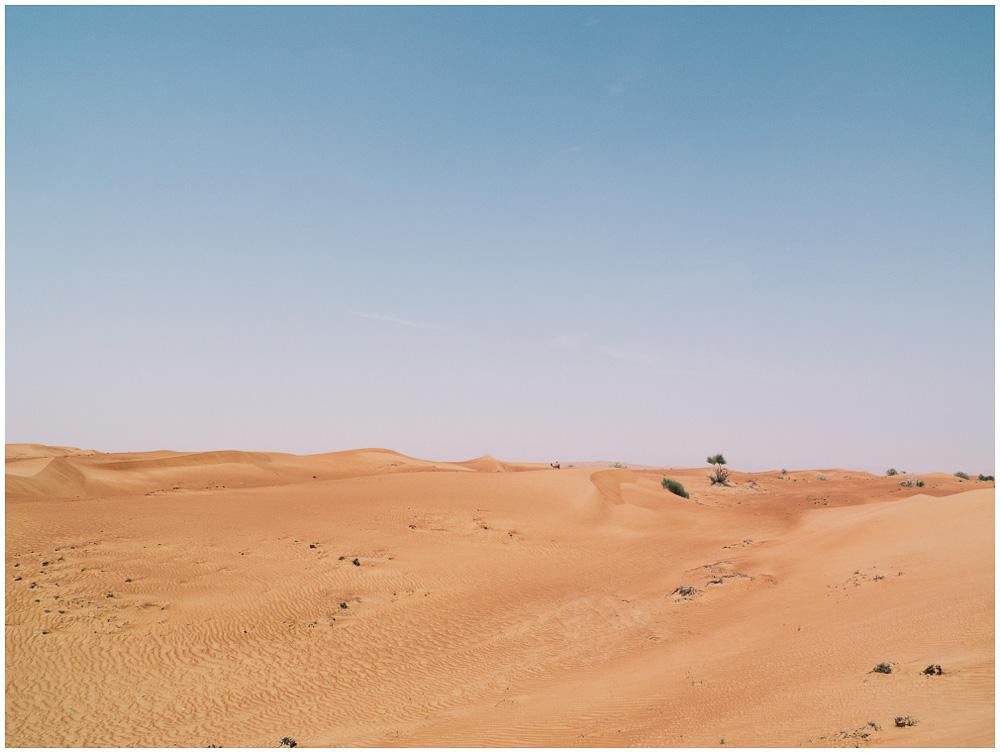 Dubai Wüste