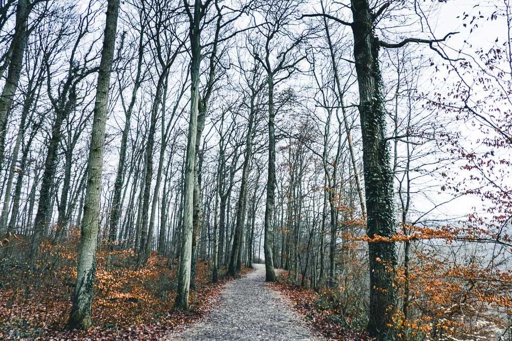 Wanderweg Burg Eltz