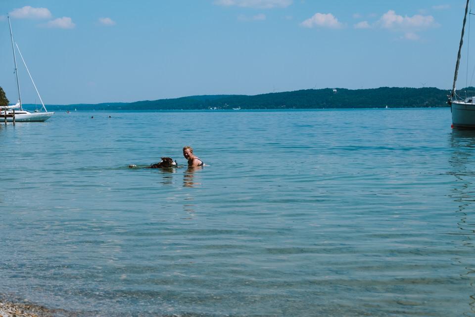Schwimmen mit Hund am Starnberger See