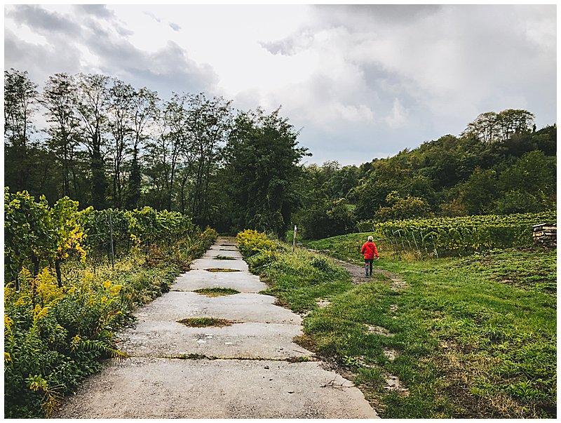 Wanderung Kraichgauer Hügelland