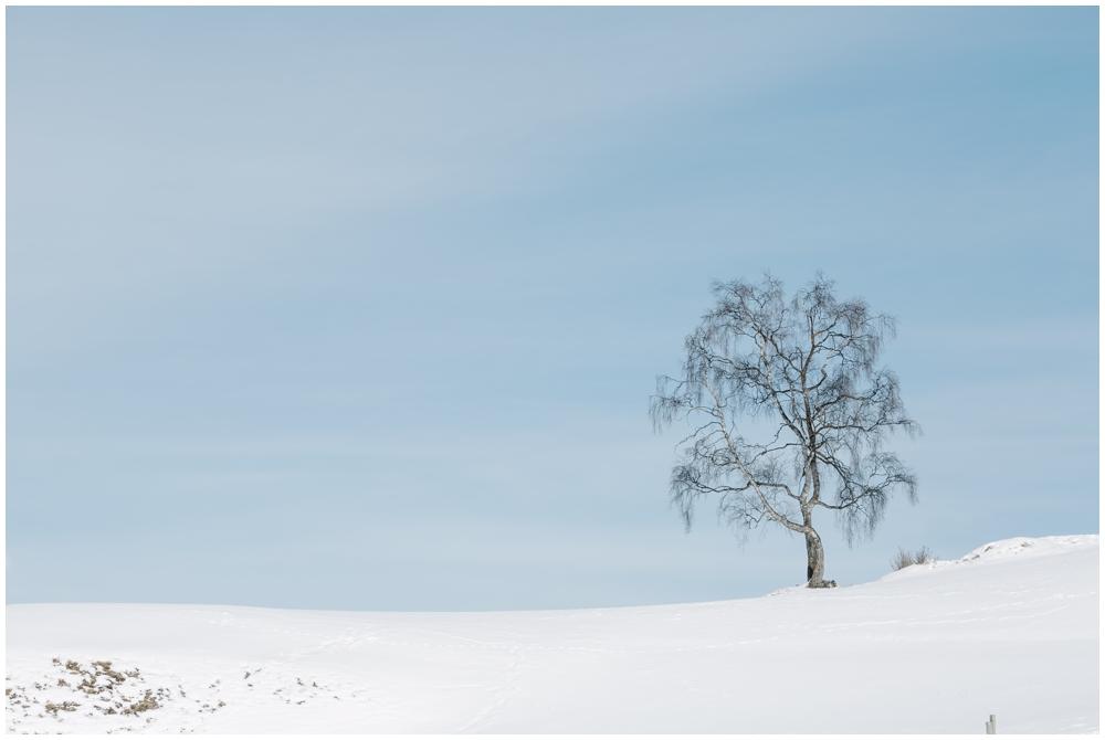 Tipps für das Fotografieren im Schnee