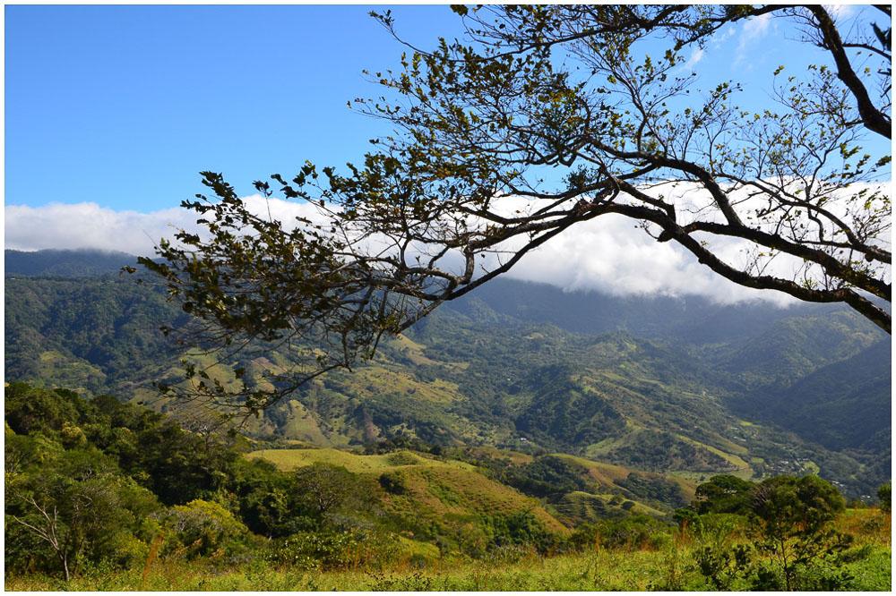 Das perfekte Reiseziel: Costa Rica costa_rica_LittleBlueBag_Reiseblog-1565
